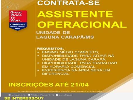 Cvale contrata Assistente Operacional para Laguna Carapã