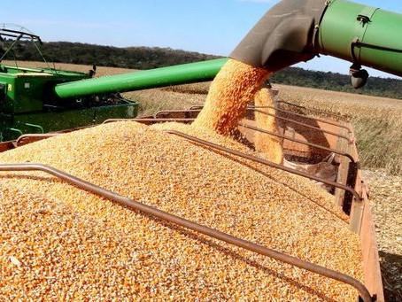 Mato Grosso do Sul colhe 13 milhões de toneladas de soja e bate recorde de produção