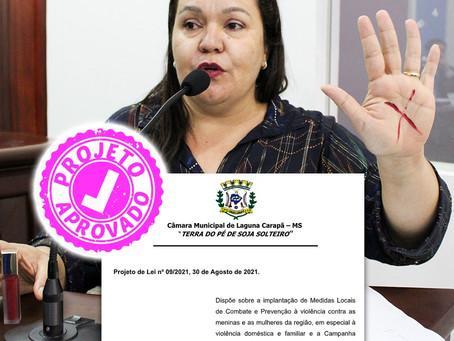 Câmara Municipal aprova projeto de combate e prevenção à violência contra mulheres