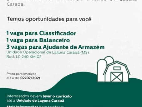 Lar oferece vagas temporárias para a unidade de Laguna Carapã. Entregar currículo hoje