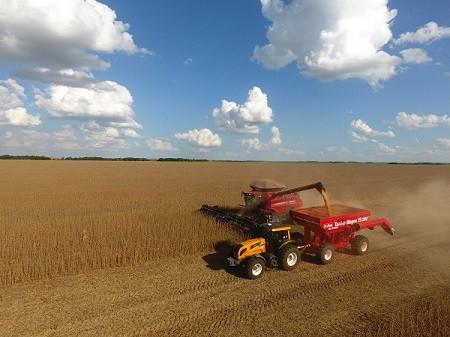 Sindicato Rural abre inscrições para o 12º Ranking da produtividade de Soja