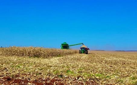 Aprosoja/MS divulga custo de produção o milho 2020/2021
