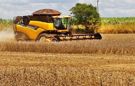Quase 10% colhida e ajuste menor na área, safra da soja deve ultrapassar 11,2 milhões de toneladas