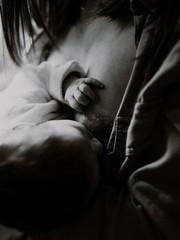 Séance photo nouveau-né et allaitement