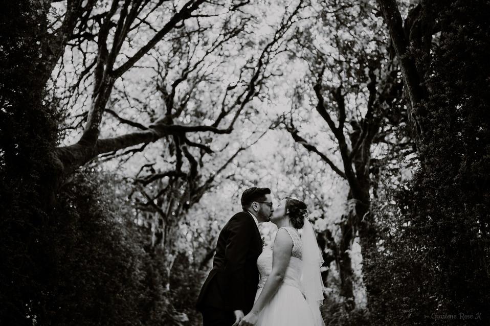 photographe,mariage,troyes,domaine,vermoise,aube,couple,crk,cm