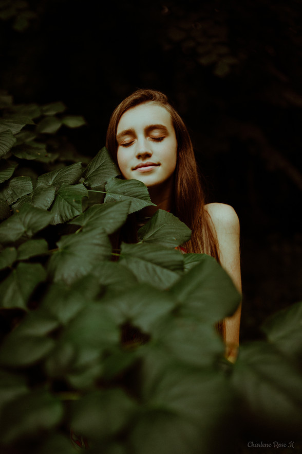 seance,photo,troyes,portrait,femme,nature,forêt,charlene,rose,k
