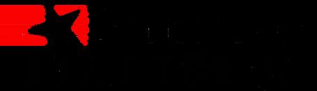 Logo - Democracy Matters.png