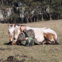 Embodied Equine Therapy session (individuals)