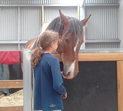 child with therapy horse