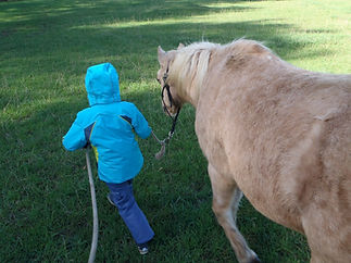 child with therapy pony