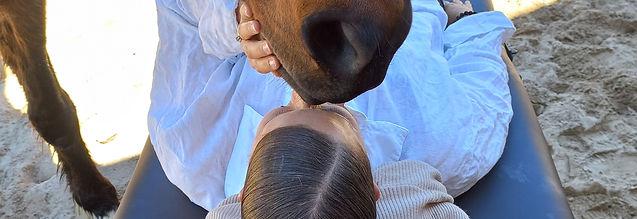 magical equine reiki