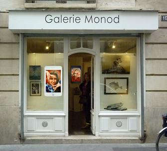 Raoul-Scipioni-Guenancia-Galerie Monod 2016