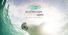 FB-home-australian-coastal-safaris-eyre-