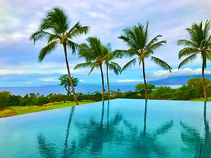 palm tree in pool reflection 1.jpg