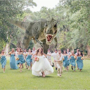 The Coolest Wedding Photos Out There