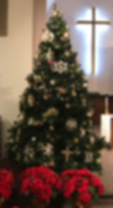 Aberdeen Church Christmas tree.JPG