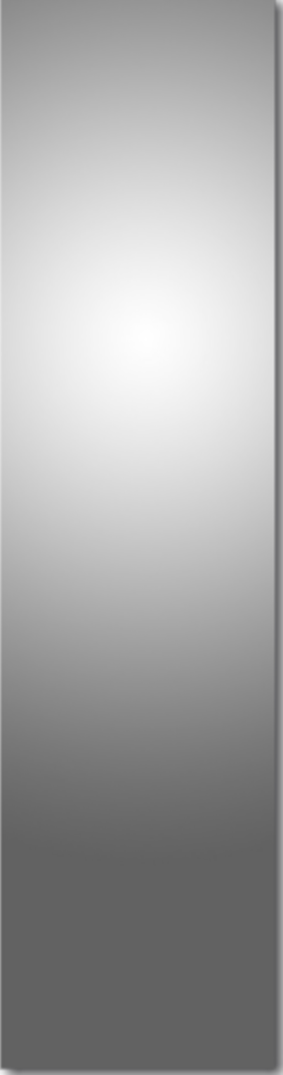 0 silvrbackground vertical png.png