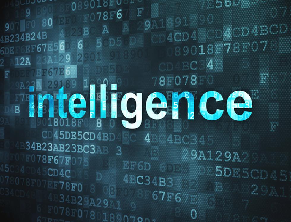 intelligence.jpg