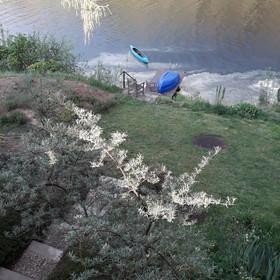 Pohled na řeku z terasy