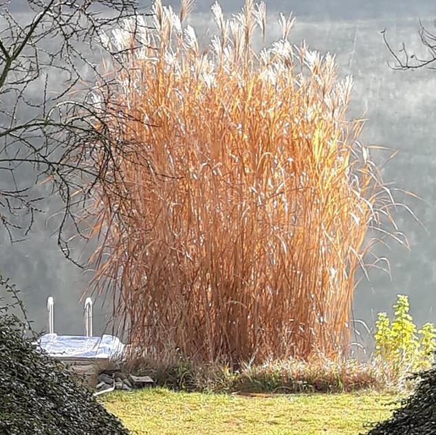 Slunečné podzimní dopoledne