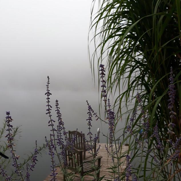 Ranní mlha a  nad řekou