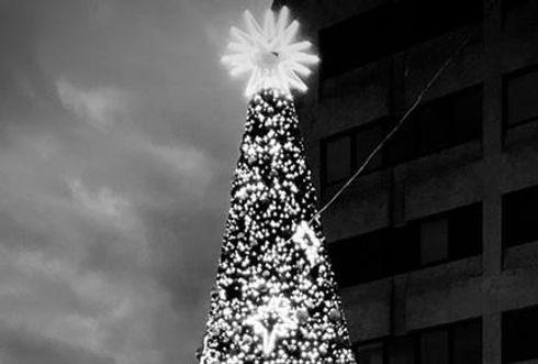 Christmas%20tree_edited.jpg