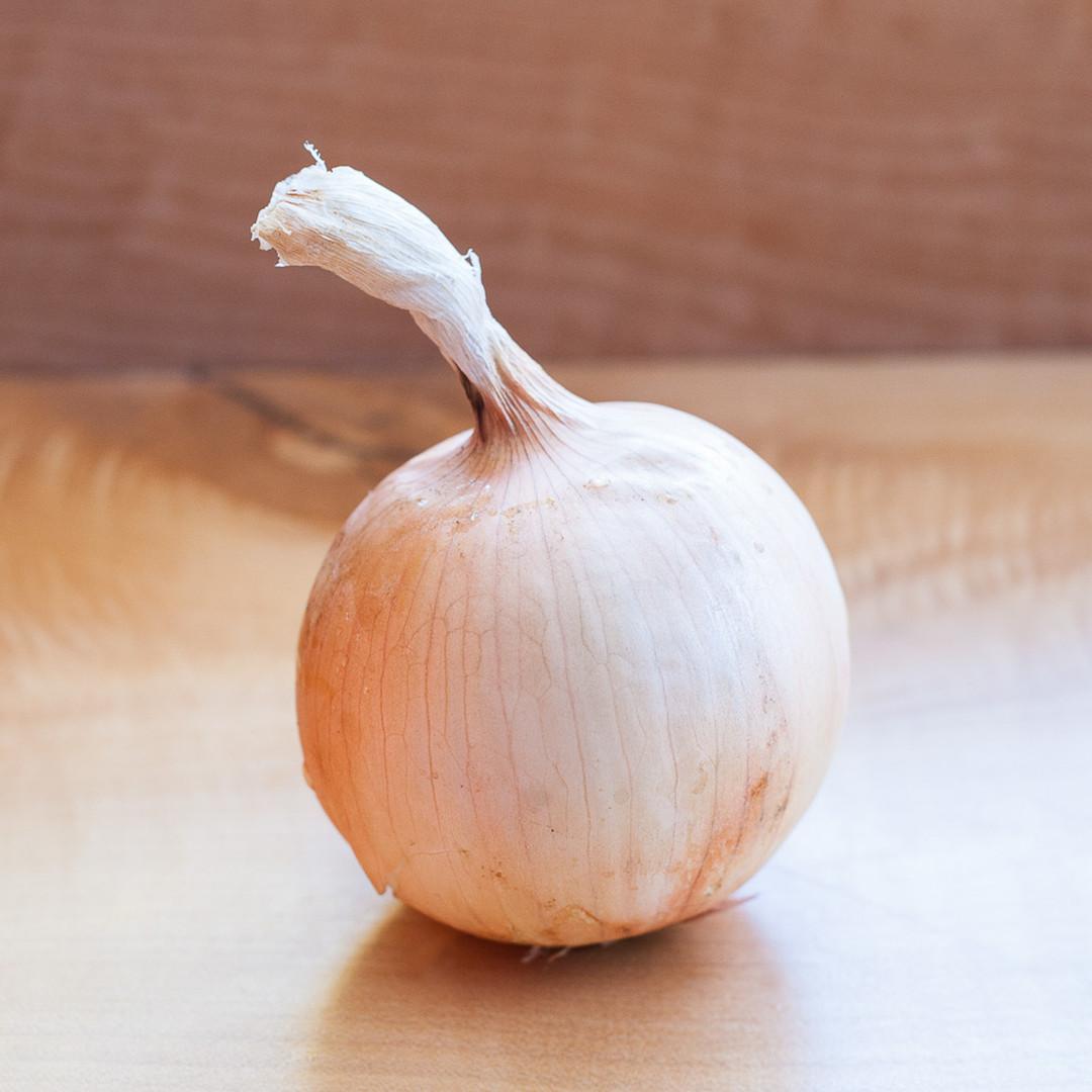 Onion, Yellow-web-web.jpg
