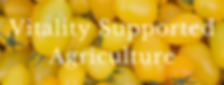 Vitality Supported Agriculture.png