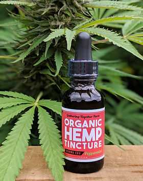 Single Tincture_Hemp BG - Edit.jpg