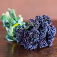 Broccoli, Purple Sprouting-web.jpg