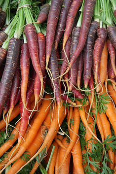 Carrots #3 .JPG