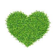 groen hart.jpg