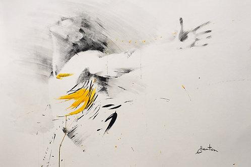 Dancer par Ewa Hauton