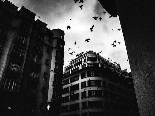 Superbe photographie de Daniel George
