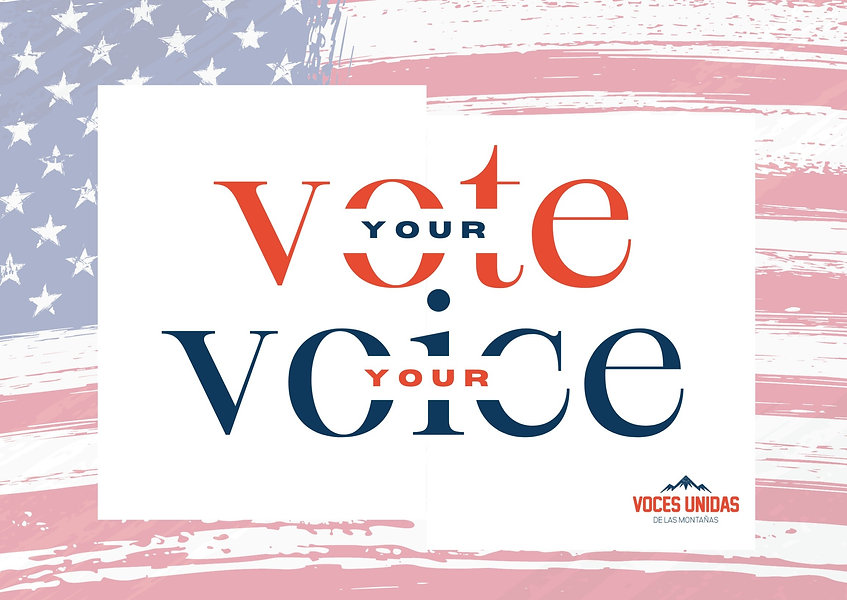 Copy of Your Vote your voice_edited_edited.jpg