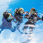 Scuba Training en piscine