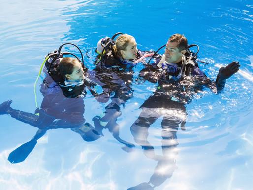 Rivalita potápěčských organizací