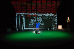 Curious Incident (Round House, D.C.)