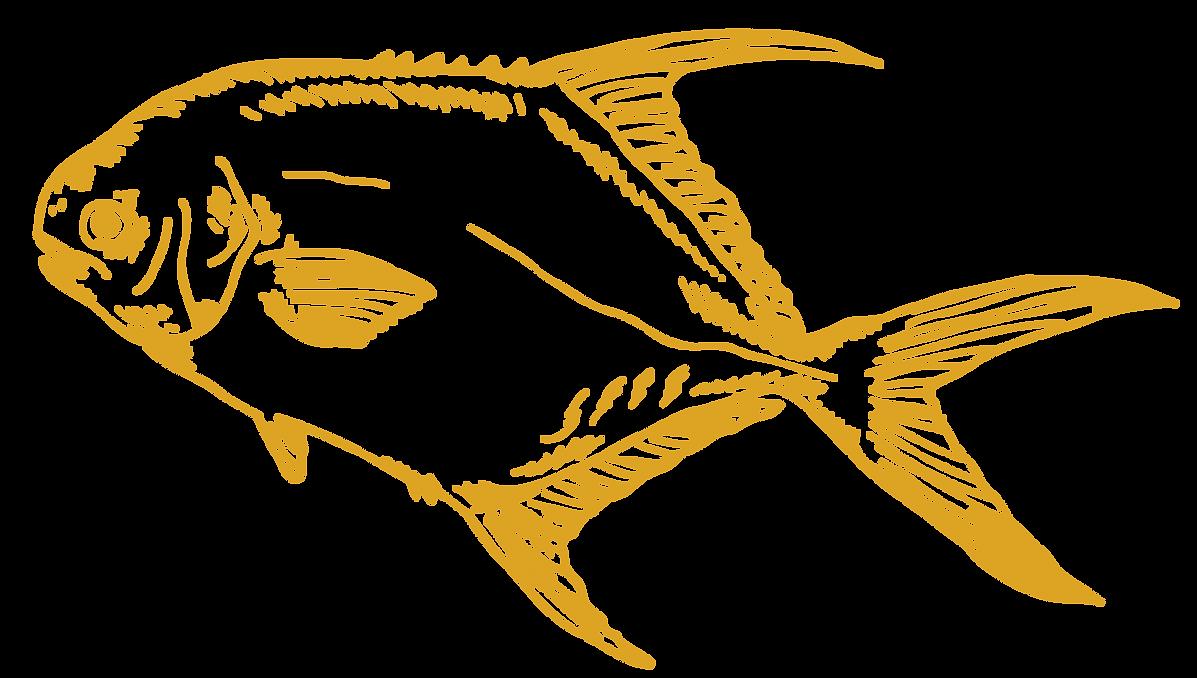 big-fish-faq-yellow.png
