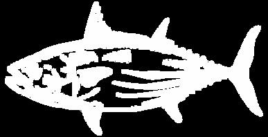 whitefish2.png