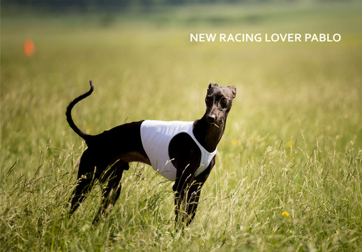 NEW RACING LOVER PABLO