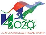Logo V4 Cup 2020 covid-19.jpg