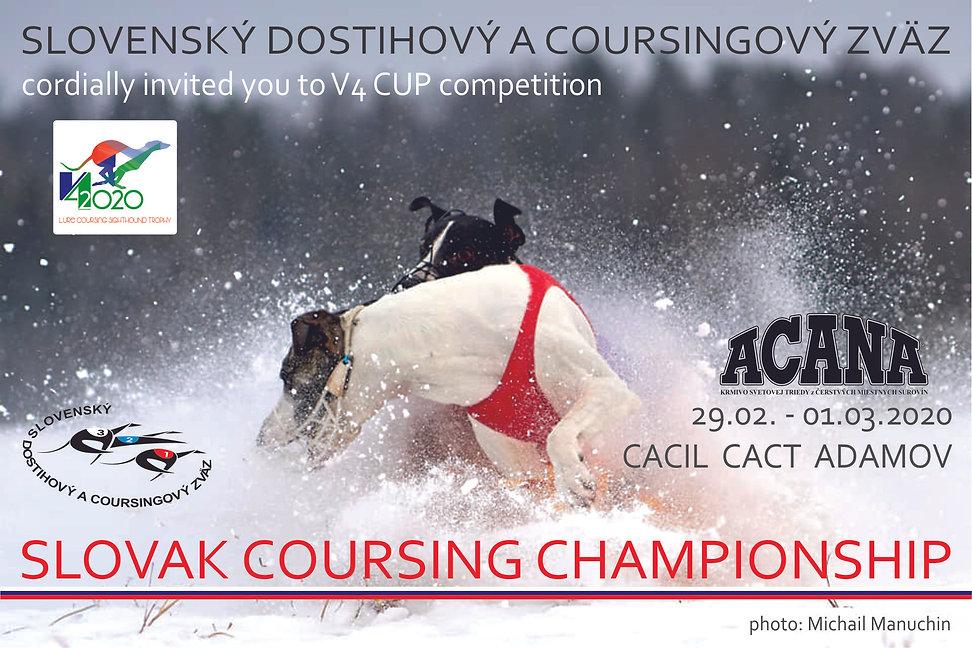 Banner Adamov 2020.jpg