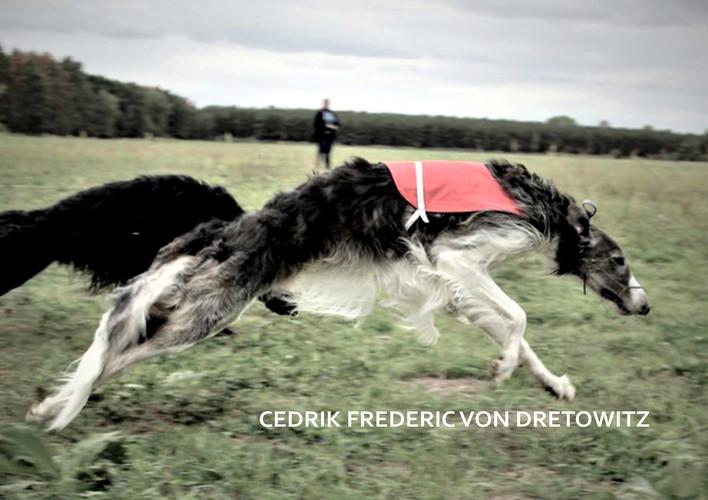 CEDRIK FREDERIC VON DRETOWITZ