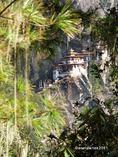 The Mystical Tigers Nest Monastery