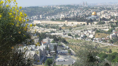 Mt. Olives to the Old City