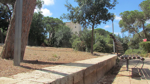 Panorama garden jul 30th 17