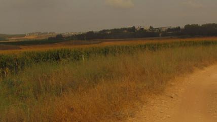 Ajalon Valley
