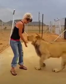 My Aunt the Lion Tamer