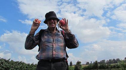 leonpomegranates.JPG
